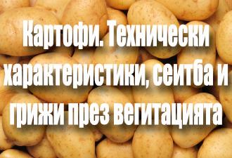 Картофи. Технически характеристики, сеитба и грижи през вегитацията