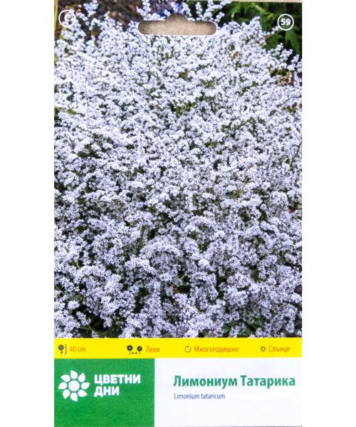 лимониум татарика