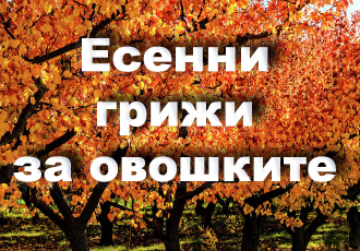 Есенни-грижи-по-овошките