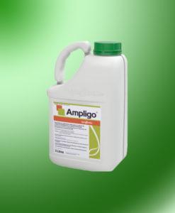 Амлиго